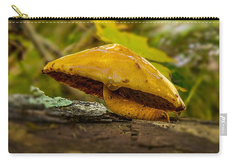 Mushroom Carry-all Pouch featuring the photograph Wet Shroom by Paul Freidlund