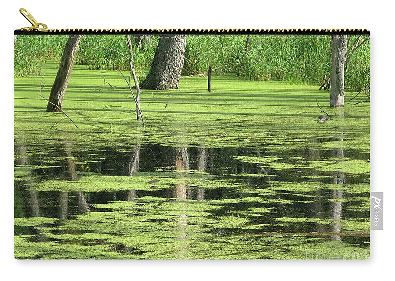 Landscape Carry-all Pouch featuring the photograph Wetland Reflection by Ann Horn