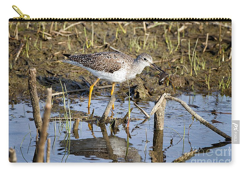 Lesser Carry-all Pouch featuring the photograph What A Meal by Ronald Lutz