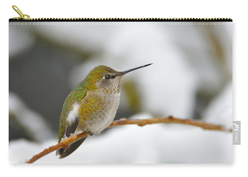 Hummingbirds Carry-all Pouch featuring the photograph What Am I Doing Here by Randy Giesbrecht