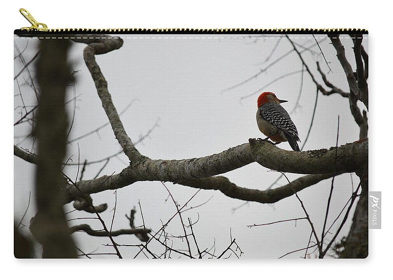 Woodpecker Carry-all Pouch featuring the photograph What's That? by Linda Kerkau
