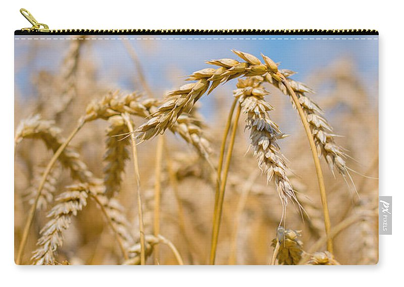 Clouds Carry-all Pouch featuring the photograph Wheat by Cheryl Baxter