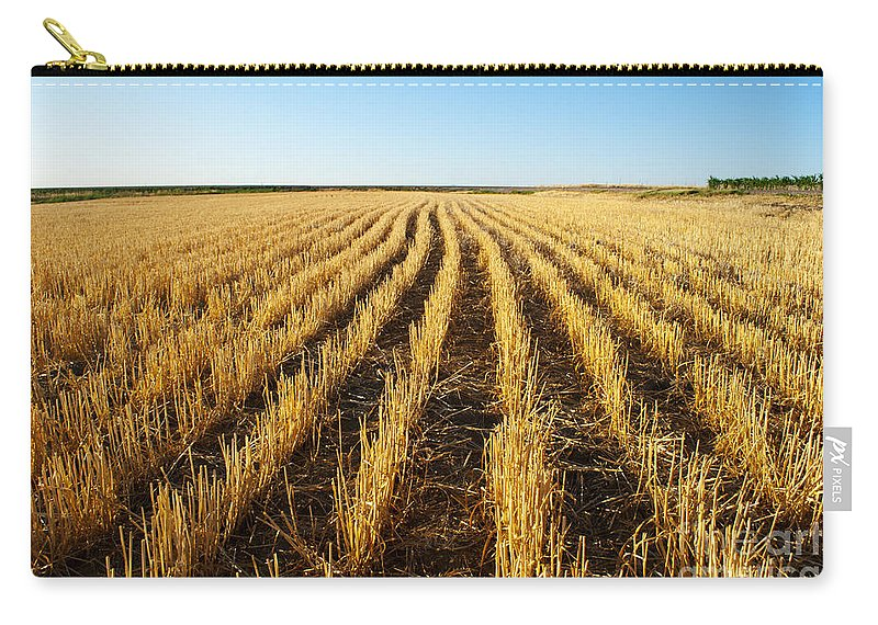 Color Image Carry-all Pouch featuring the photograph Wheat Field by Juli Scalzi