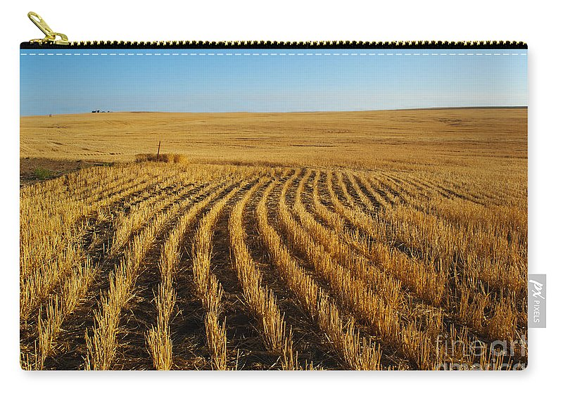 Color Image Carry-all Pouch featuring the photograph Wheat Rows by Juli Scalzi