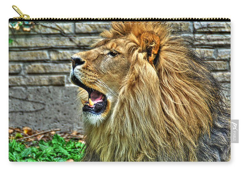 Lion Carry-all Pouch featuring the photograph When He Speaks...they Listen...lazy Boy At The Buffalo Zoo by Michael Frank Jr