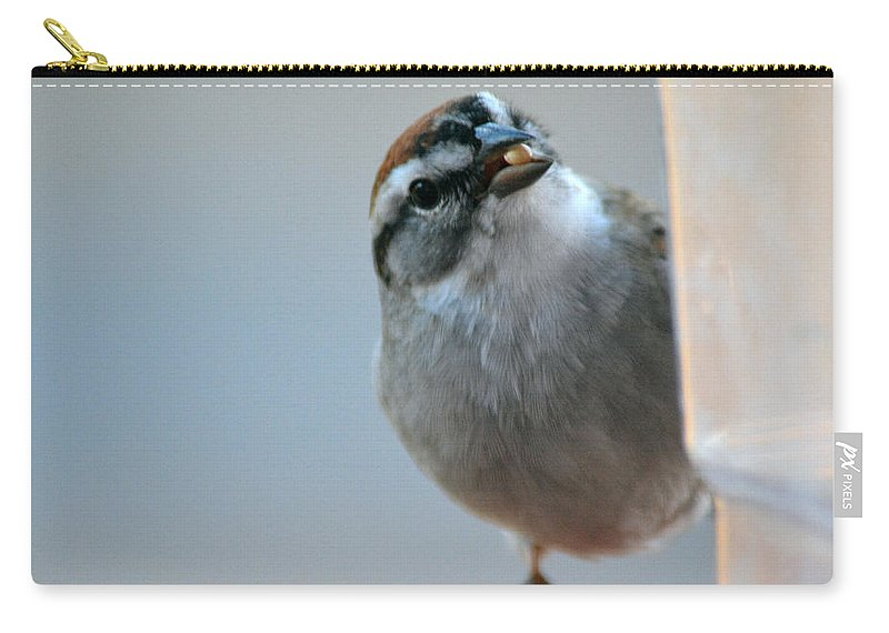 Red Carry-all Pouch featuring the photograph Where Did All My Food Go? by Barb Dalton