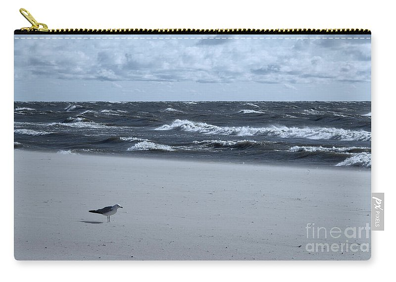 Waves Carry-all Pouch featuring the photograph Where Is Everybody? by Ann Horn