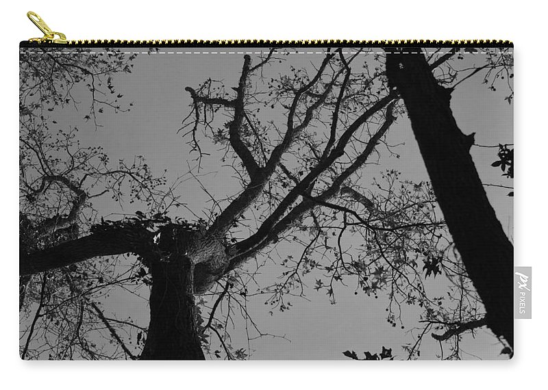 Wall Art Photographs Carry-all Pouch featuring the photograph Silhouette Trees by Barb Dalton