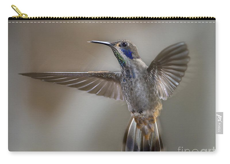 Festblues Carry-all Pouch featuring the photograph Whimsical Gem... by Nina Stavlund