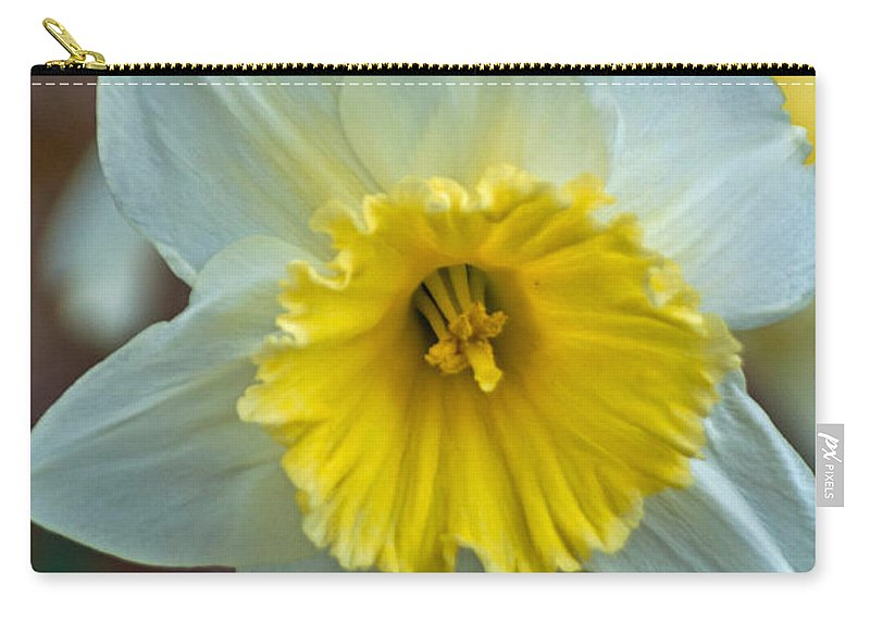 Passover Flower Carry-all Pouch featuring the photograph White And Yellow Daffodil by Tikvah's Hope