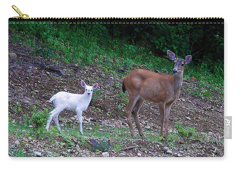 Deer Carry-all Pouch featuring the photograph White Angel And Mom II by Rebecca Parker