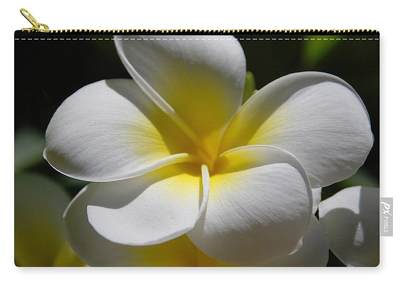 Nature Carry-all Pouch featuring the photograph White Bloom by Rob Hans