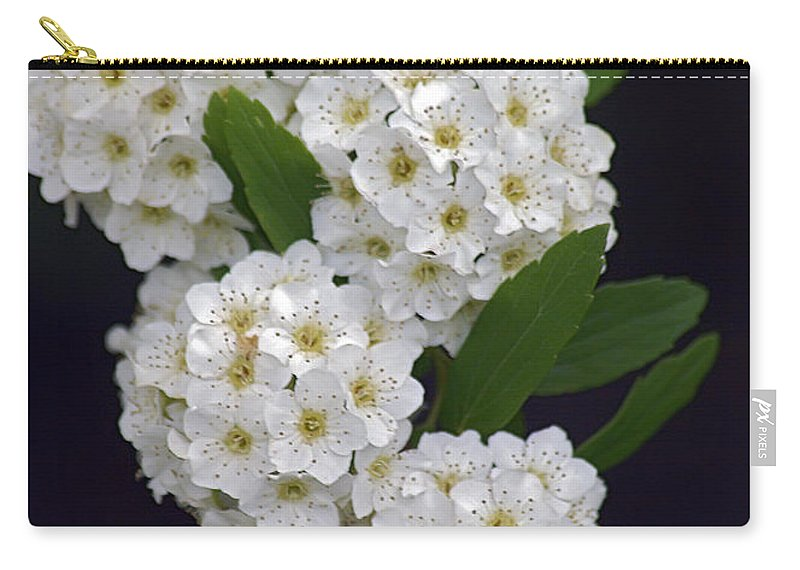 2d Carry-all Pouch featuring the photograph White Blossoms by Brian Wallace