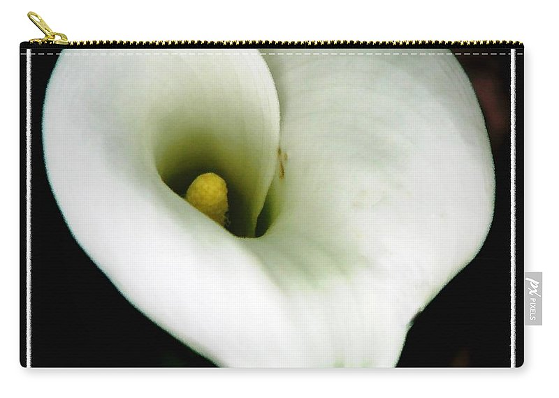 Calla Lilies Carry-all Pouch featuring the photograph White Calla Lily by Rose Santuci-Sofranko