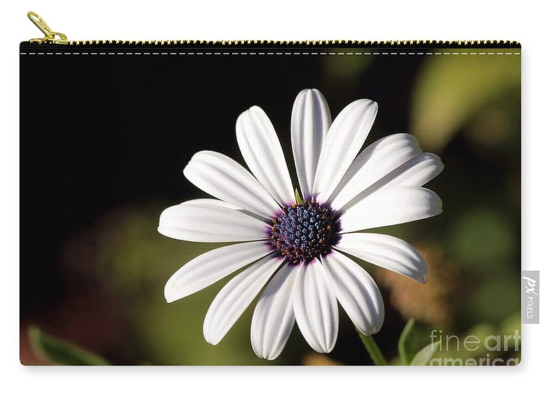 Daisy Carry-all Pouch featuring the photograph White Daisy by Kenny Glotfelty