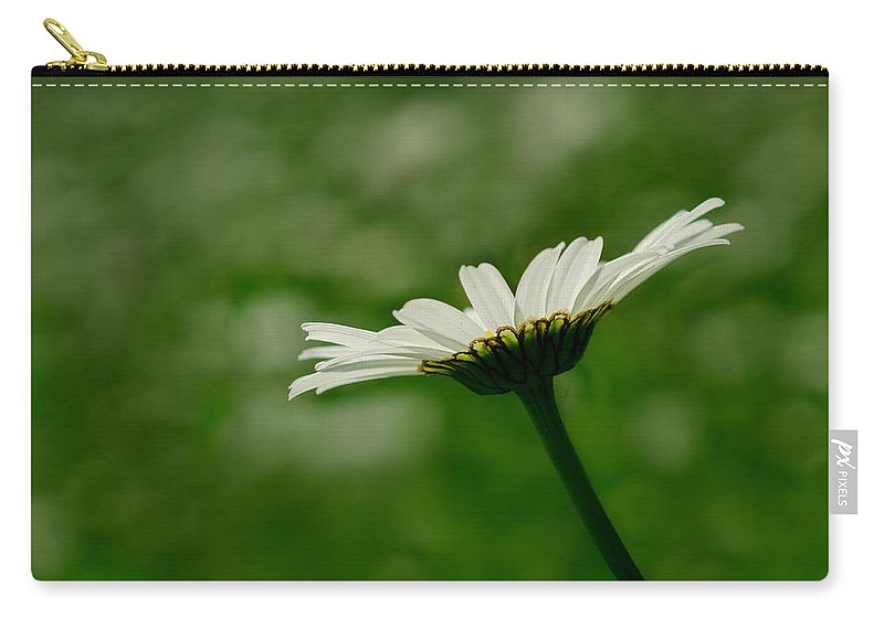 Flower Carry-all Pouch featuring the photograph White Daisy by TouTouke A Y