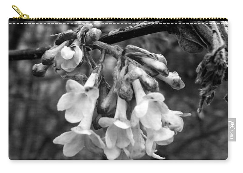 Flower Carry-all Pouch featuring the photograph White Darkness by Image-in Photoart