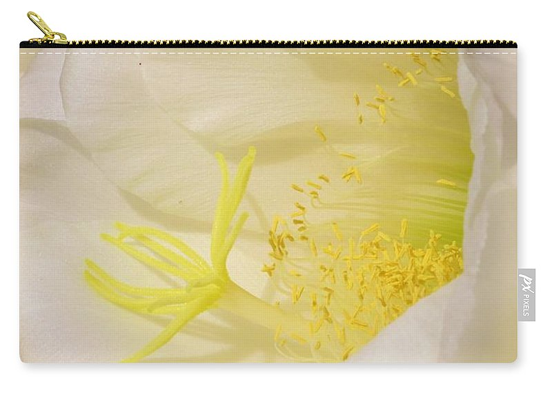 Cactus Flower Carry-all Pouch featuring the photograph White Delicate Cactus Flower by Michelle Cassella