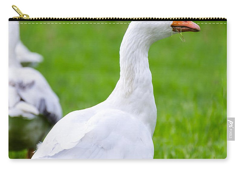 Duck Carry-all Pouch featuring the photograph White Duck by Sotiris Filippou
