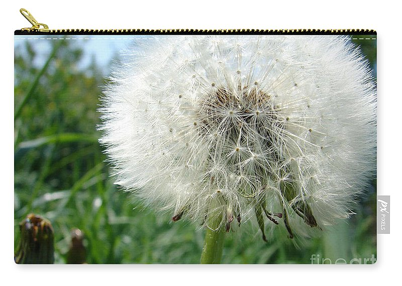 Fluffy Carry-all Pouch featuring the photograph White Fluffy by Carol Lynch