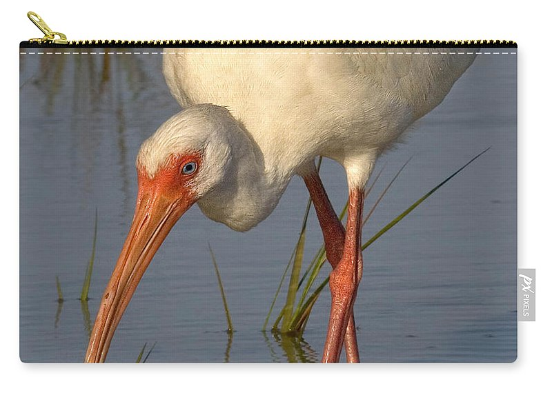 White Ibis Carry-all Pouch featuring the photograph White Ibis In Grass by Jerry Fornarotto