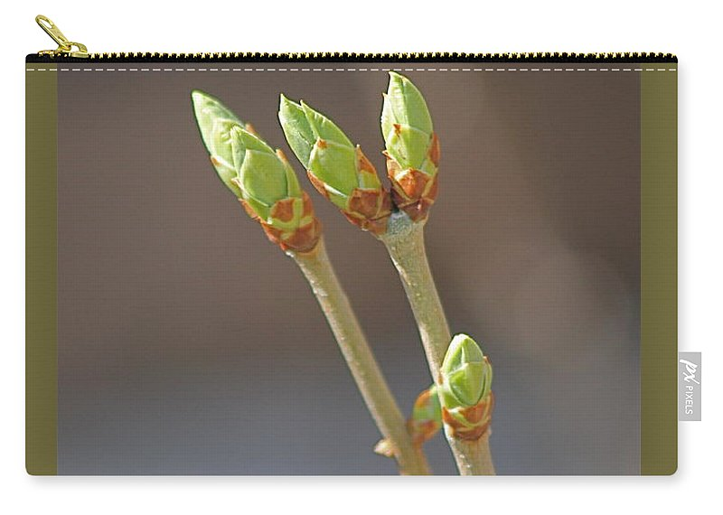 Plants Carry-all Pouch featuring the photograph White Lilac Buds by Wayne Williams