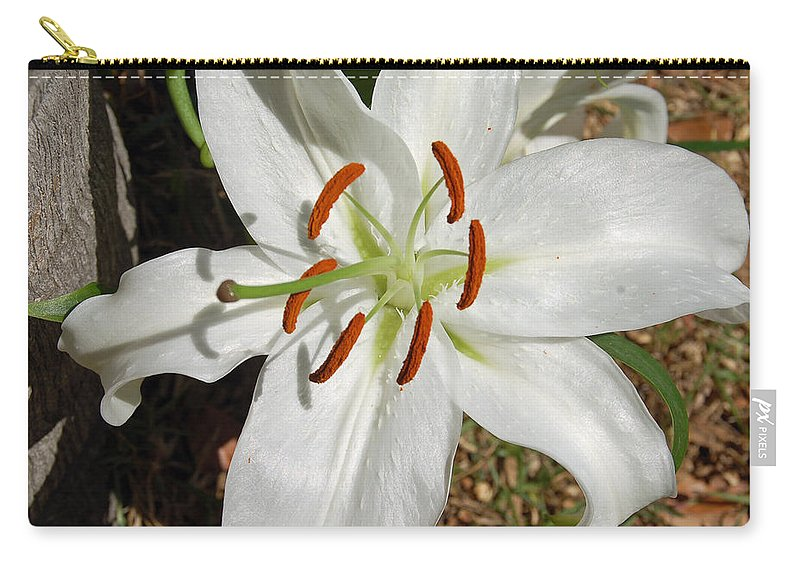 Flower Carry-all Pouch featuring the photograph White Lily by Aimee L Maher ALM GALLERY