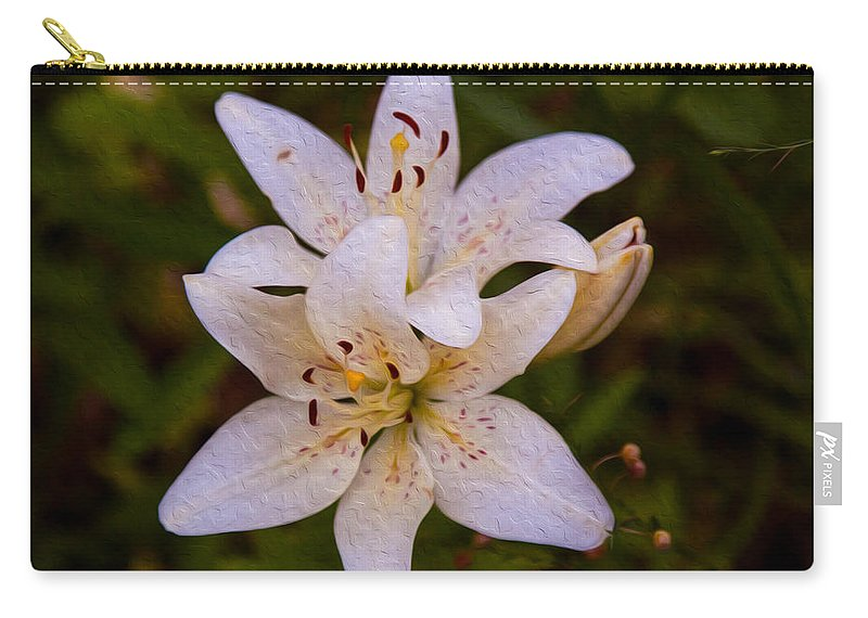 North Cascades Carry-all Pouch featuring the painting White Lily Starburst by Omaste Witkowski