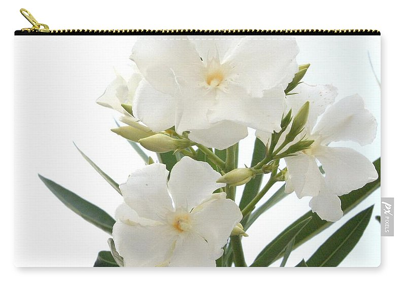 White oleander flowers close up isolated on white background carry nerium oleander carry all pouch featuring the photograph white oleander flowers close up isolated on mightylinksfo
