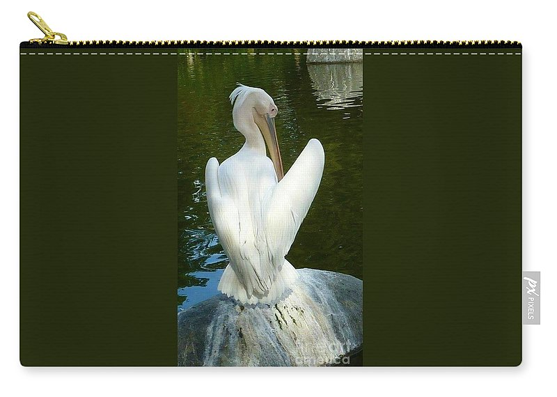 View Of White Pelican With Folded Wings From The Back Carry-all Pouch featuring the photograph White Pelican Back by Susan Garren