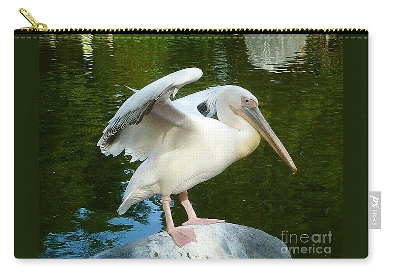 Side View Of White Pelican Standing On A Rock Carry-all Pouch featuring the photograph White Pelican Standing by Susan Garren