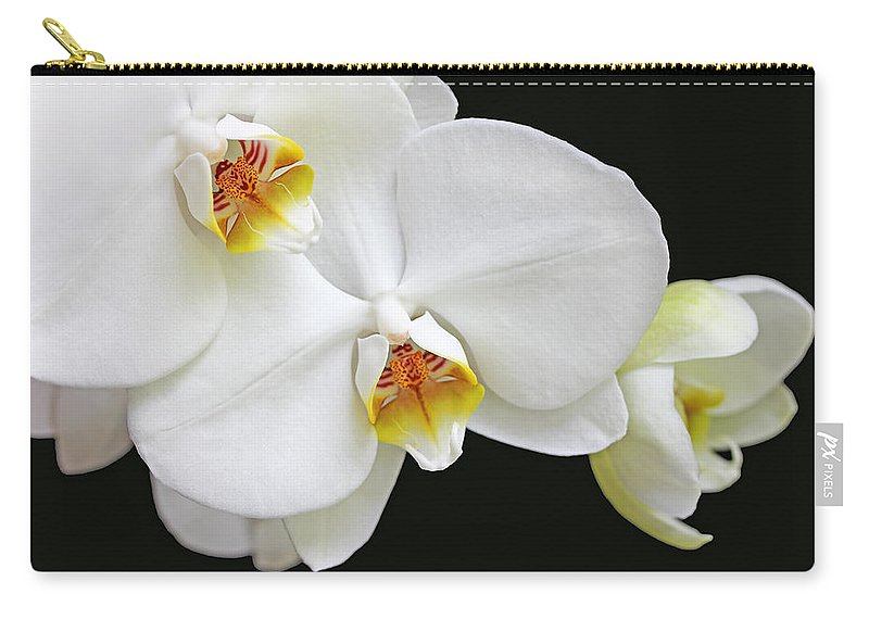 Orchid Carry-all Pouch featuring the photograph White Phalaenopsis Orchid Flowers by Jennie Marie Schell