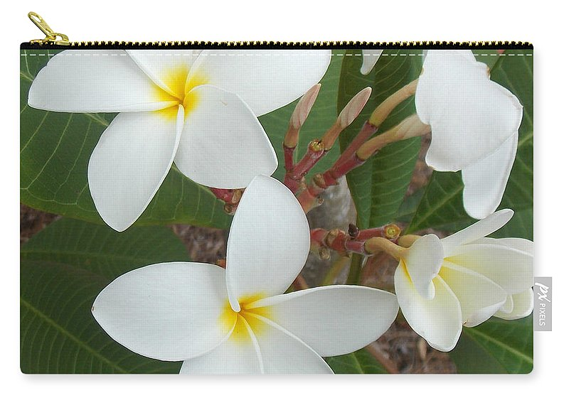 Plumeria Carry-all Pouch featuring the photograph White Plumeria by To-Tam Gerwe