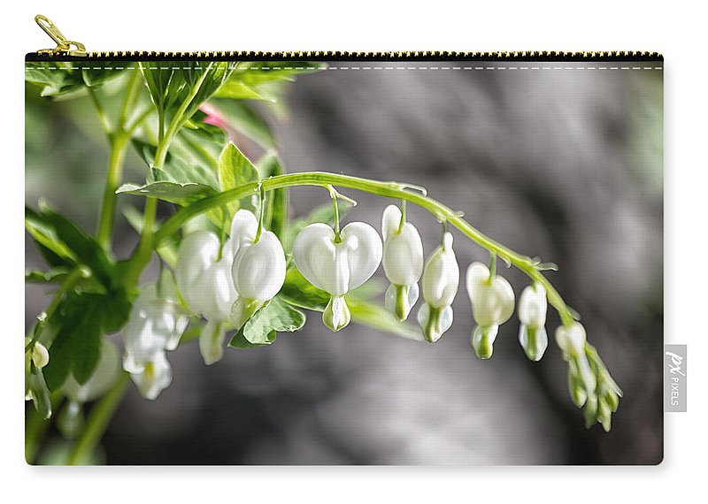Flora Carry-all Pouch featuring the photograph White Queen by Lauri Novak