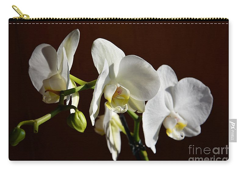 Orchids Carry-all Pouch featuring the photograph White by Ramona Matei