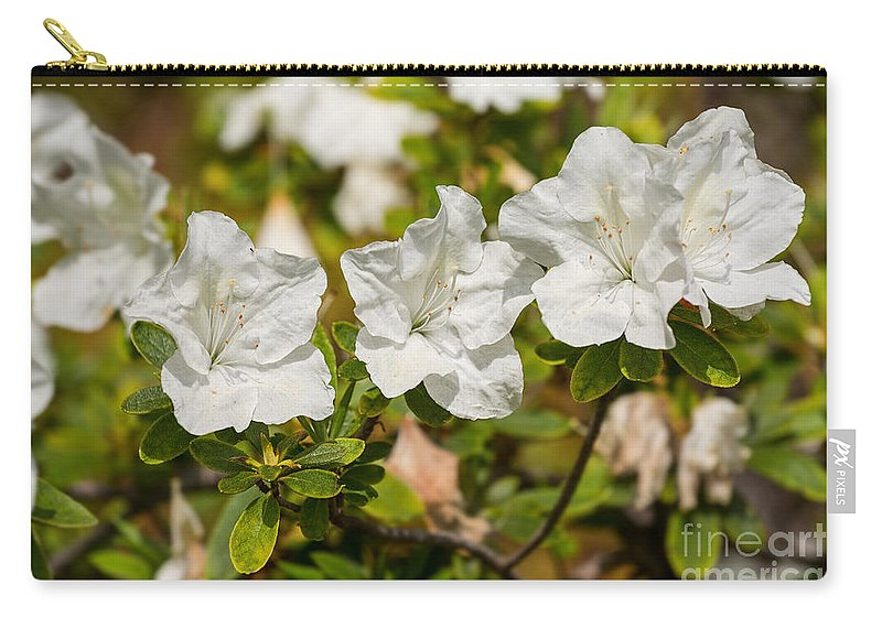 Fielders White Carry-all Pouch featuring the photograph White Rhododendron Flowers In Bloom. by Jamie Pham