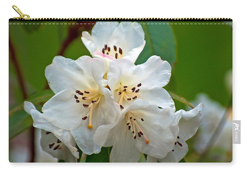 White Rhododendrons Carry-all Pouch featuring the photograph White Rhododendrons by Tikvah's Hope
