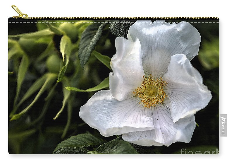Rose Carry-all Pouch featuring the photograph White Rose by Belinda Greb