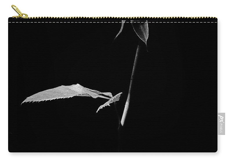 Rose Carry-all Pouch featuring the photograph White Rose by Casper Cammeraat