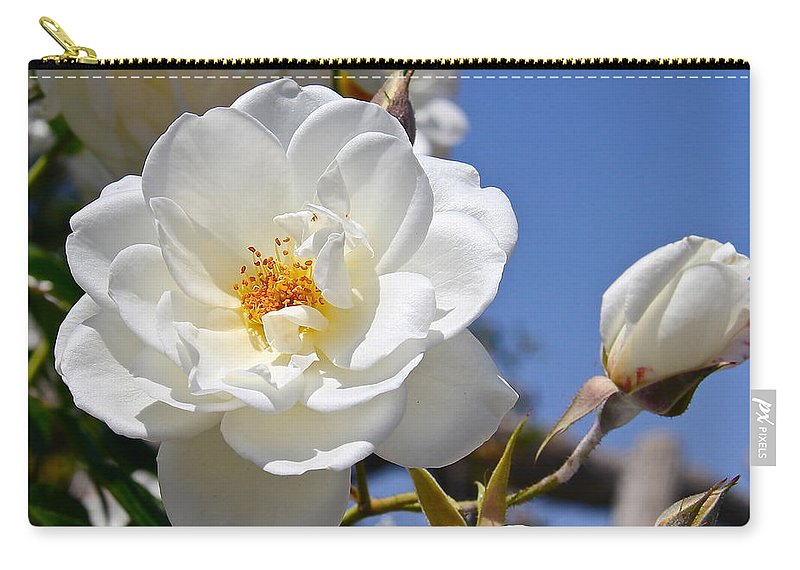 Rose Carry-all Pouch featuring the photograph White Rose by Denise Mazzocco