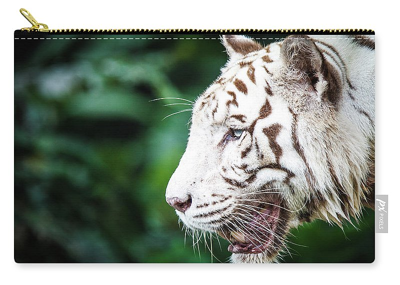 Snarling Carry-all Pouch featuring the photograph White Tiger by Tony Kh Lim