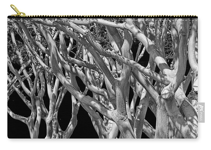 Art Carry-all Pouch featuring the photograph White Tree Limbs by Randall Nyhof