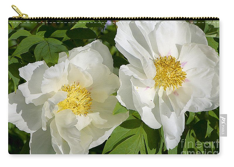 White Tree Peony Carry-all Pouch featuring the photograph White Tree Peony by Sharon Talson