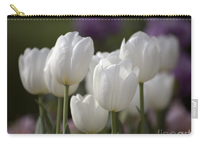 Tulips Carry-all Pouch featuring the photograph White Tulips 9169 by Terri Winkler