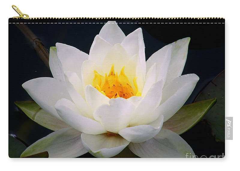 Water Lily Carry-all Pouch featuring the photograph White Water Lily by Nina Ficur Feenan