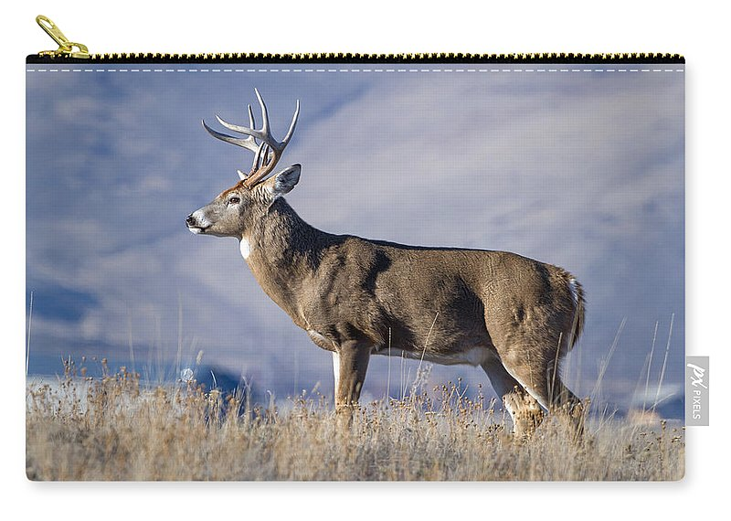 Deer Carry-all Pouch featuring the photograph Whitetail Buck On A Ridge by Jack Bell
