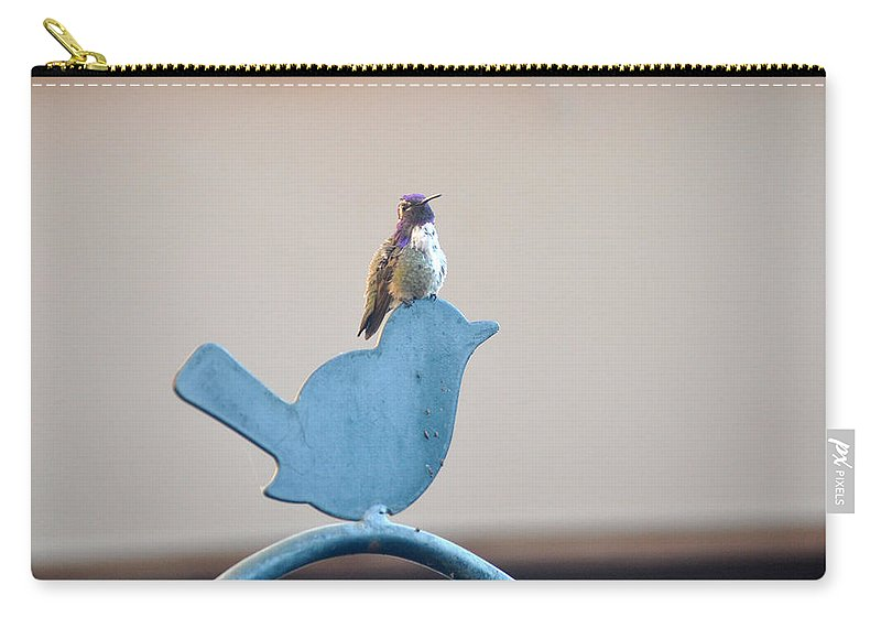 Animals Carry-all Pouch featuring the photograph Who's Bigger by Jay Milo