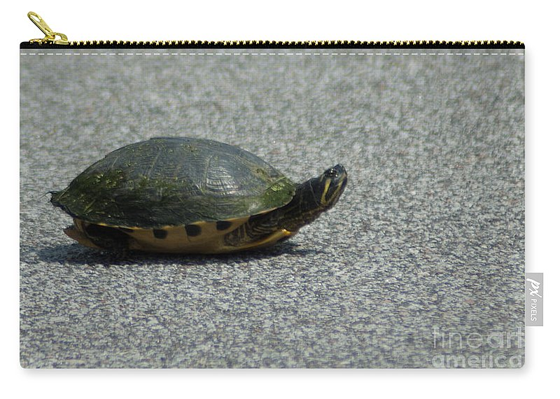 Turtle Carry-all Pouch featuring the photograph Why Did The Turtle Cross The Road by Dale Powell
