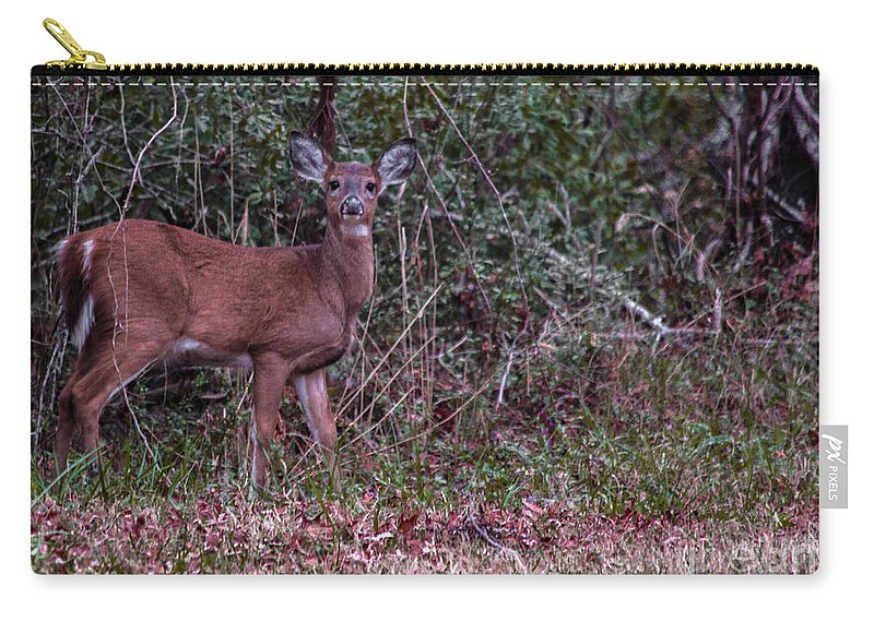 Worry Carry-all Pouch featuring the photograph Why So Worried by Scott Hervieux
