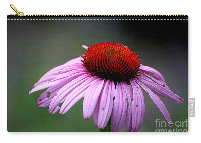 Flower Carry-all Pouch featuring the photograph Wickham Park Coneflower by Neal Eslinger
